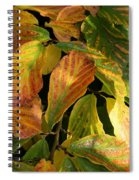 Autumn Leaves 91 Spiral Notebook