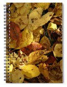 Autumn Leaves 94 Spiral Notebook