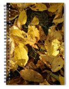 Autumn Leaves 95 Spiral Notebook