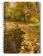Autumn Leaves In A Burn Spiral Notebook