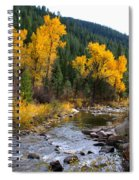 Autumn Leaves Of Red And Gold Spiral Notebook