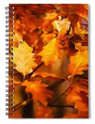 Autumn Leaves Oil Spiral Notebook
