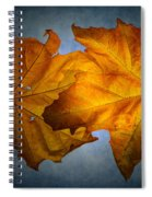 Autumn Leaves On Blue Spiral Notebook