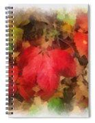 Autumn Leaves Photo Art 04 Spiral Notebook