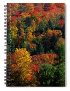 Autumn Leaves Vermont Usa Spiral Notebook