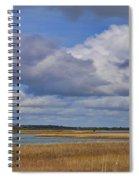 Autumn Marsh At Shell Island Spiral Notebook