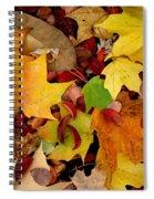 Autumn Moods 19 Spiral Notebook