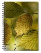 Autumn Mosaic Spiral Notebook