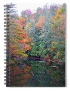 Autumn Mountain Stream Spiral Notebook