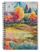 Autumn Near Taos Spiral Notebook