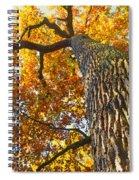 Autumn Oak Spiral Notebook