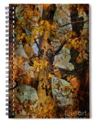 Autumn Oaks In Dance Mode Spiral Notebook