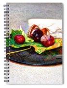 Autumn Offering Spiral Notebook