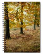 Autumn On Cannock Chase Spiral Notebook