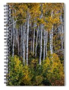 Autumn On Mcclure Pass Spiral Notebook