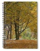autumn on Moenchsberg in Salzburg Spiral Notebook