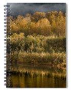 Autumn On The Klamath 3 Spiral Notebook