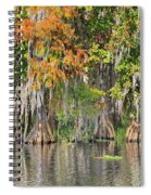 Autumn On The St. Johns Spiral Notebook