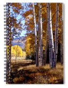 Autumn Paint Chama New Mexico Spiral Notebook