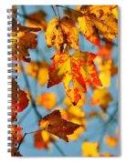 Autumn Petals Spiral Notebook
