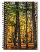 Autumn Pines Square Spiral Notebook