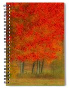 Autumn Popping Spiral Notebook