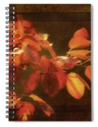 Autumn Promise Spiral Notebook