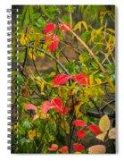 Autumn Rain Spiral Notebook