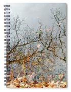 Autumn Reflections On Alloway Lake Nj Spiral Notebook