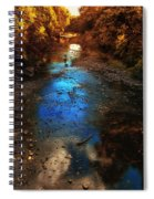 Autumn Reflections On The Tributary Spiral Notebook