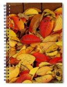 Autumn Remains 2 Spiral Notebook