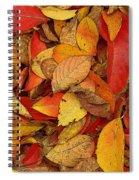 Autumn Remains Spiral Notebook