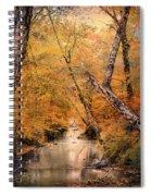Autumn Riches 1 Spiral Notebook