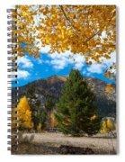 Autumn Scene Framed By Aspen Spiral Notebook
