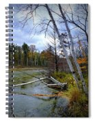 Autumn Scene Of Along The Shore Of The Platte River In Michigan Spiral Notebook