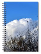 Autumn Sky 2 Spiral Notebook
