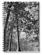 Autumn Snow Spiral Notebook