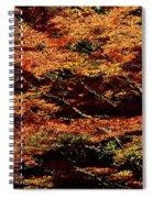 Autumn Solarisation 1 Spiral Notebook