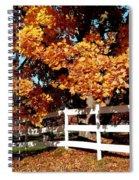 Autumn Splendor 10 Spiral Notebook