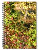 Autumn Splendor 7 Spiral Notebook