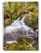 Autumn Stream Spiral Notebook