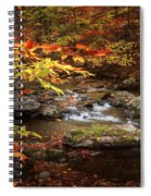 Autumn Stream Square Spiral Notebook