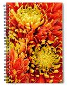 Autumn Sunrise Bouquet Spiral Notebook