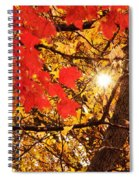 Autumn Sunrise Painterly Spiral Notebook
