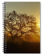 Autumn Sunset Spiral Notebook