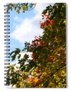 Autumn To Perfection Spiral Notebook