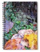 Autumn Tree Trunk  Spiral Notebook