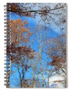 Autumn Trees And Heaven Spiral Notebook