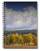 Autumn Trees In A Row Spiral Notebook