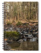 Autumn Tributary Path Spiral Notebook